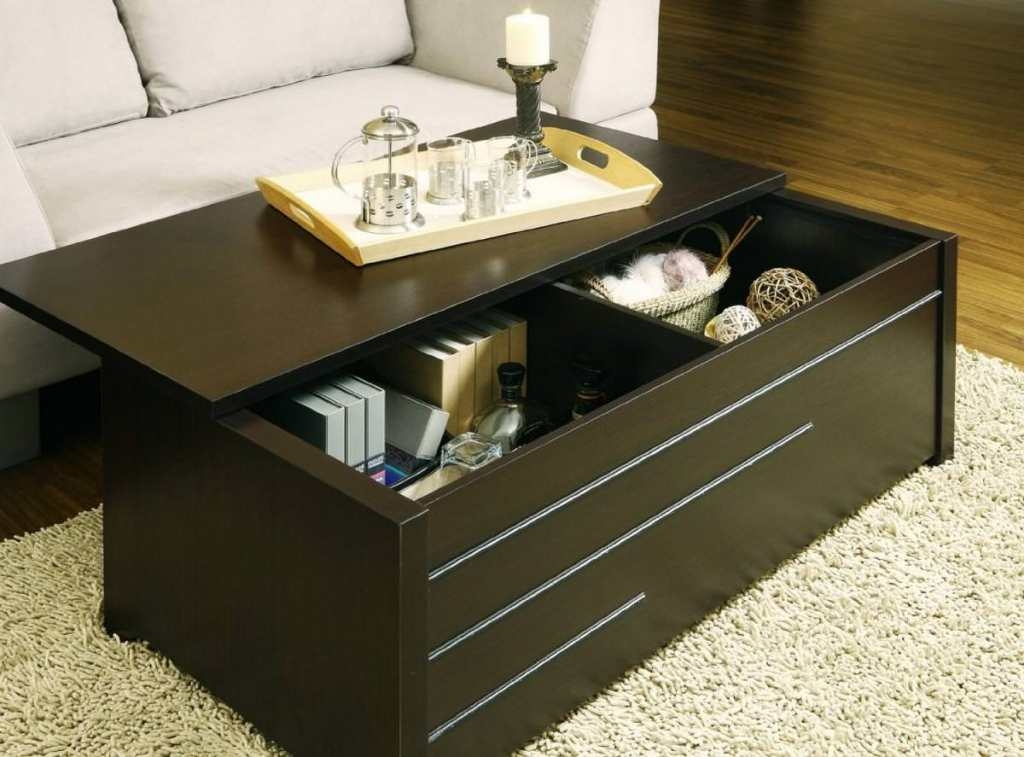 Impressive Latest Storage Trunk Coffee Tables Intended For Storage Trunk Coffee Table The Modern Touch And Trunk Coffee (Image 29 of 50)