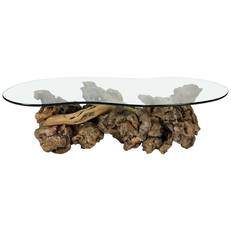 Remarkable Premium Free Form Coffee Tables Throughout Large Sculptural Driftwood Burl Coffee Table With Free Form Glass (Image 31 of 40)