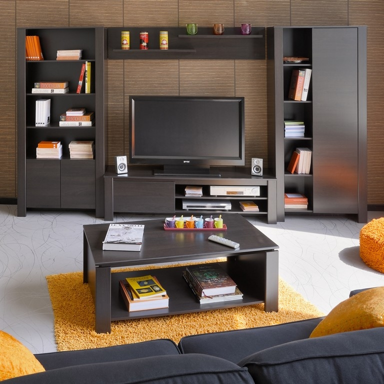 Stunning Premium TV Stands Bookshelf Combo Pertaining To Bookcase With Tv Stand (Image 39 of 50)