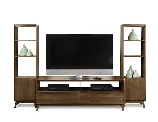 Stunning Wellknown TV Stands With Bookcases Within Furniture Catalina Tv Stand And Bookcases (Image 44 of 50)