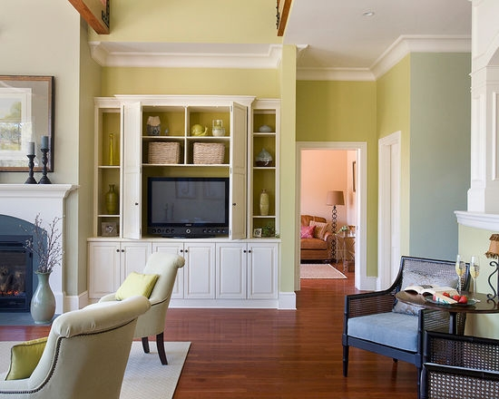Wonderful Series Of Living Room TV Cabinets Within Built In Tv Cabinet Houzz (Image 49 of 50)