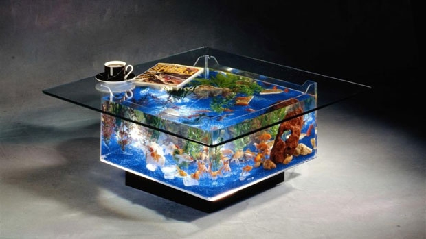 Wonderful Variety Of Dragon Coffee Tables Inside Aquarium Coffee Table Instash (Image 49 of 50)