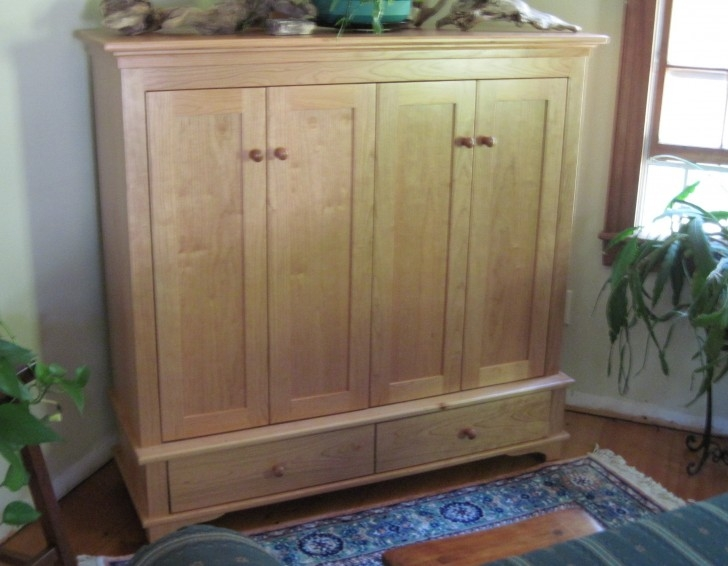 Wonderful Variety Of Enclosed TV Cabinets With Doors For Flat Screen Tv Cabinets With Doors Roselawnlutheran (View 16 of 50)