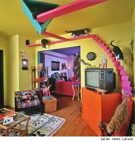 10 Awesomely Clever Pet Friendly Furniture Items – Dog Furniture Inside Cat Tunnel Couches (Image 1 of 20)
