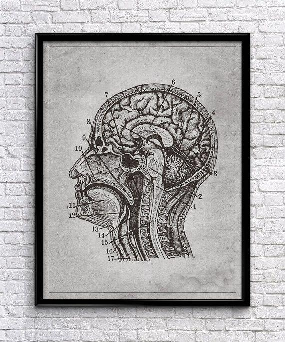 11 Best Vintage Science Images On Pinterest | Vintage Prints Pertaining To Medical Wall Art (Image 1 of 20)