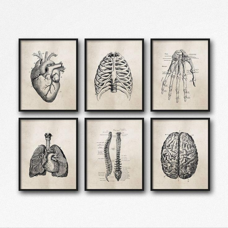 122 Best Art Work Images On Pinterest | Medicine, Anatomy Art And With Medical Wall Art (Image 4 of 20)