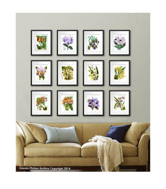 18 Best Exotic Tropical Flowering Orchids Wall Art Decor Prints Inside Wall Art Print Sets (View 10 of 20)