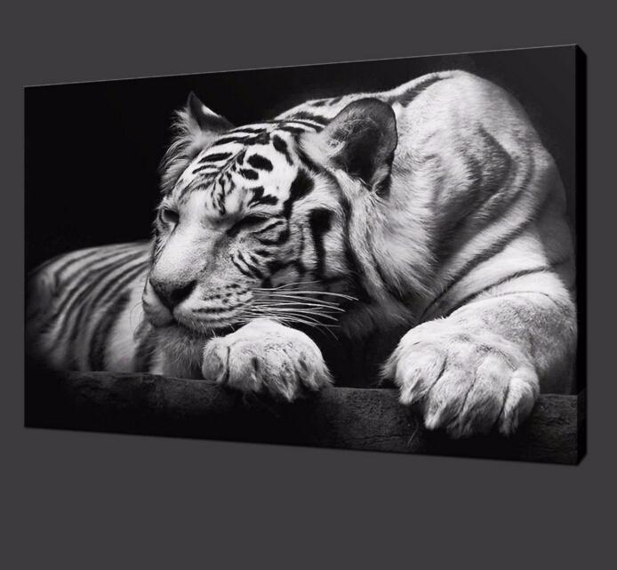 2017 Modern Tiger Wall Art Hd Painting On Canvas Single Animal Throughout Animal Wall Art (Image 1 of 20)