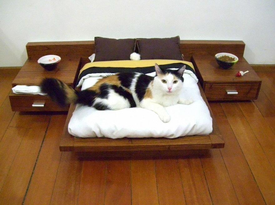 25 Awesome Furniture Design Ideas For Cat Lovers | Bored Panda Regarding Cat Tunnel Couches (Image 5 of 20)