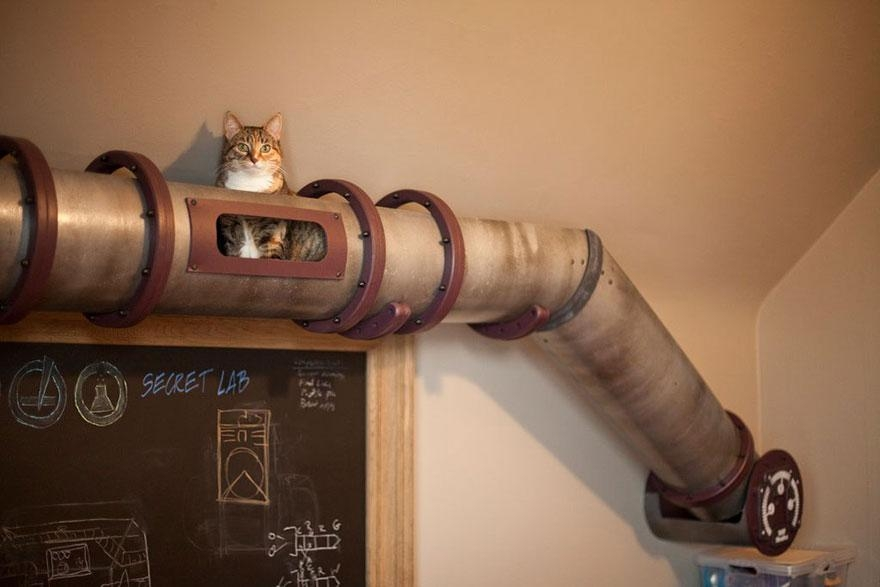 25 Awesome Furniture Design Ideas For Cat Lovers | Bored Panda Throughout Cat Tunnel Couches (Image 6 of 20)