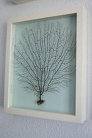 26 Best How To Make Shadow Boxes Images On Pinterest | Diy Shadow Inside Sea Fan Wall Art (Image 3 of 20)