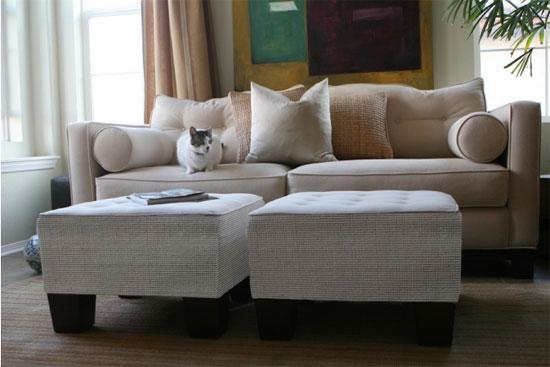 26 Marvelous Cat Proof Sofa – Voqalmedia In Cat Proof Sofas (Image 5 of 20)