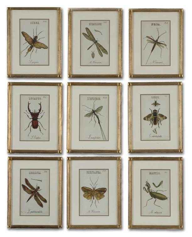 28 Best Insect Art Images On Pinterest | Insect Art, Insects And Pertaining To Insect Wall Art (View 10 of 20)