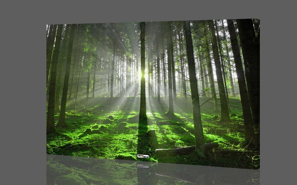 Aliexpress : Buy Green Forest Wood Trees, Large Hd Canvas With Large Green Wall Art (Image 6 of 20)