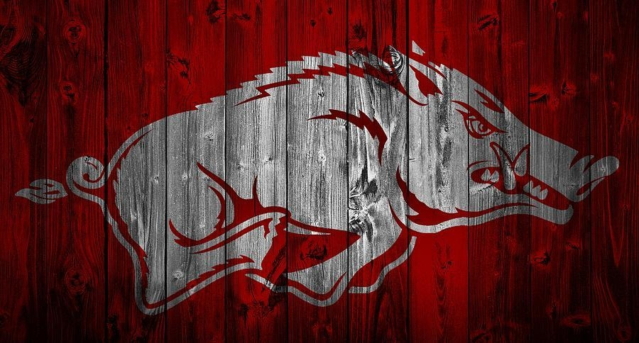 Arkansas Razorbacks Barn Door Mixed Mediadan Sproul Intended For Razorback Wall Art (Image 14 of 20)