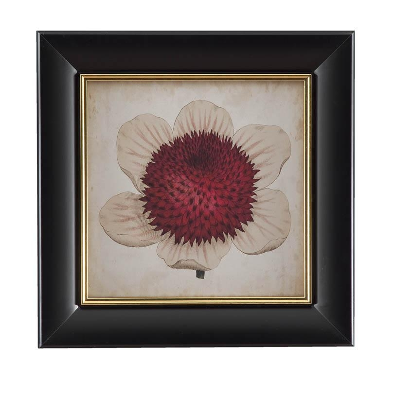 Bassett Pop Floral Iv Framed Art – Walmart With Regard To Walmart Framed Art (Image 4 of 20)