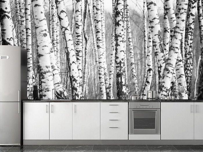 Best 25+ Birch Tree Wallpaper Ideas On Pinterest | Tree Wallpaper Regarding Aspen Tree Wall Art (Image 8 of 20)