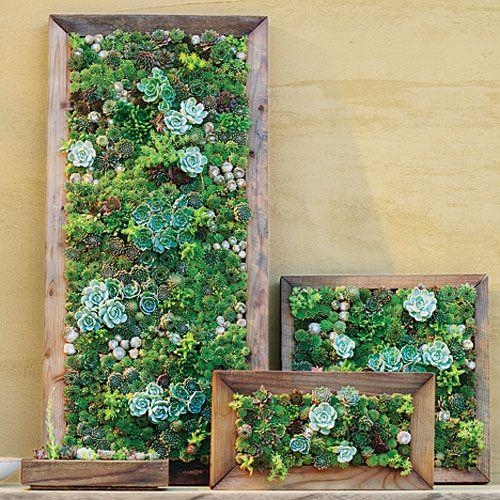 Best 25+ Living Wall Planter Ideas On Pinterest | Vertical Garden Inside Floral & Plant Wall Art (Image 7 of 20)