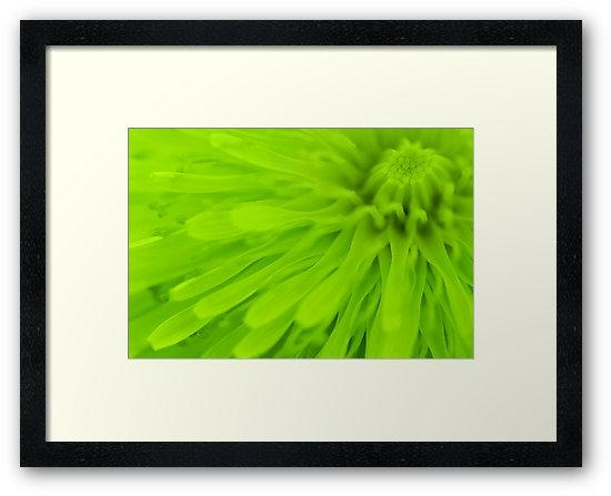 "Bright Lime Green Wall Art"" Framed Printsnatalie Kinnear In Lime Green Wall Art (Image 9 of 20)"