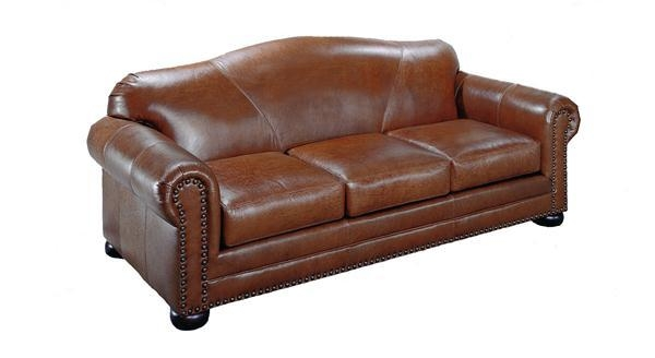 Featured Image of Camelback Leather Sofas