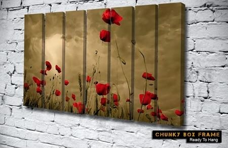 Canvas Prints Sizes, View Our Wall Art Framing Options Regarding Red Poppy Canvas Wall Art (Image 6 of 20)