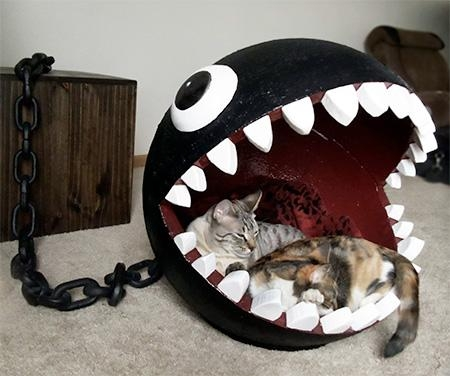 Chain Chomp Cat Bed Regarding Cat Tunnel Couches (Image 13 of 20)