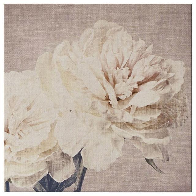 Cream Petals Canvas Wall Art – Contemporary – Artwork  Graham Inside Graham & Brown Wall Art (Image 7 of 20)