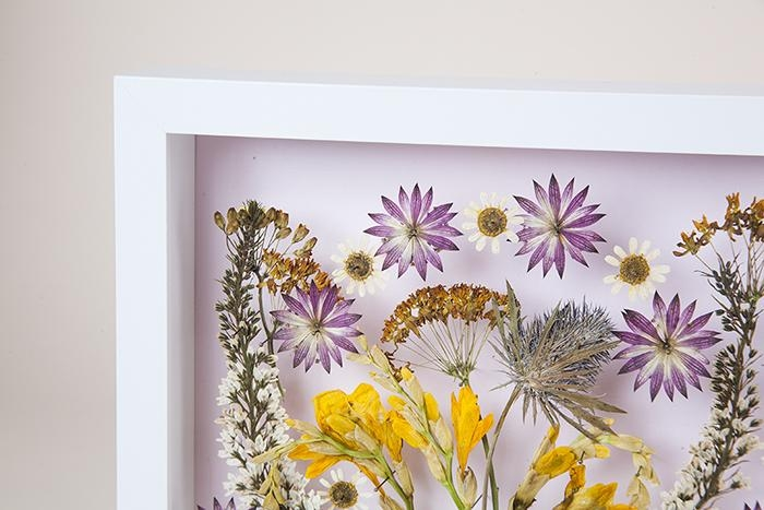 Diy Pressed Flower Wall Art – Design*sponge With Regard To Floral & Plant Wall Art (View 7 of 20)