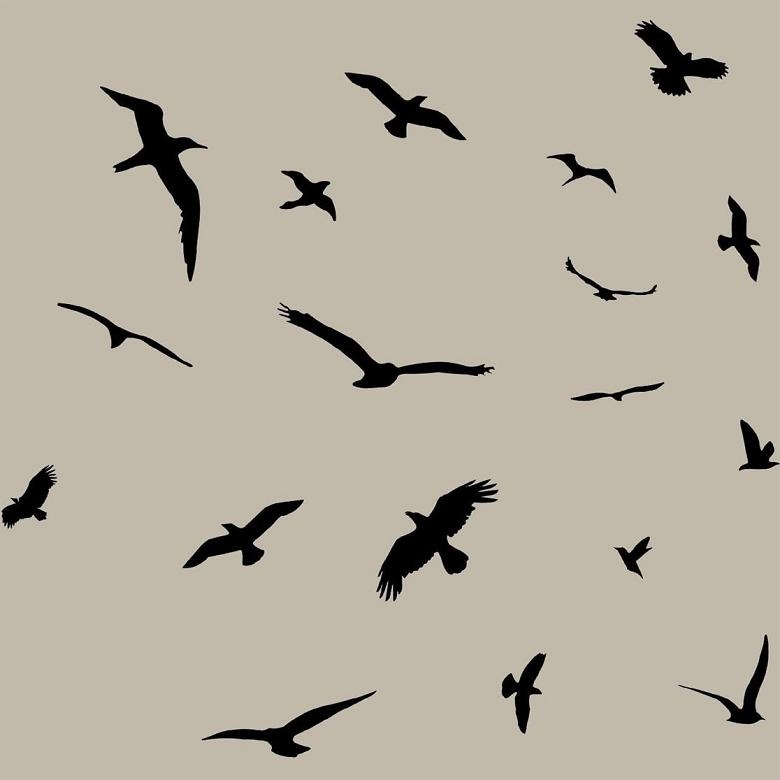 Flock Of Birds Flying Wall Decals Stickers Peel And Stick Wall Art In Flock Of Birds Wall Art (Image 11 of 20)