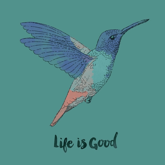 Home & Pet Life Is Good Hummingbird Wall Art | Life Is Good With Regard To Life Is Good Wall Art (View 7 of 20)