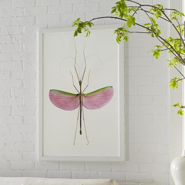 Insect Wall Art With Insect Wall Art (View 16 of 20)