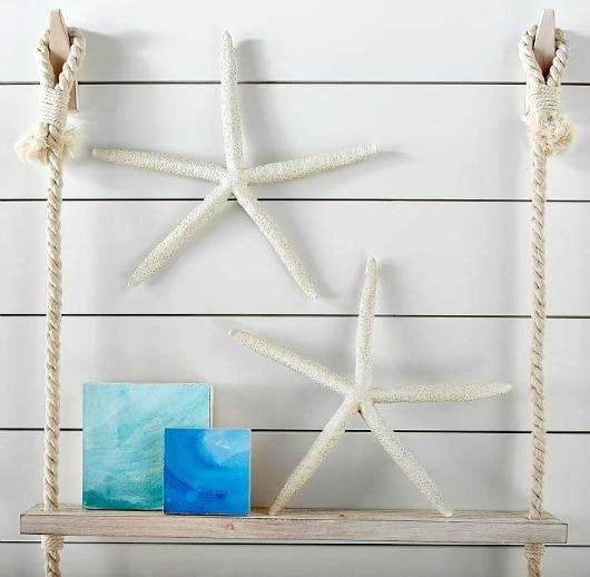 Large Starfish & Sand Dollar For Wall Decor – Completely Coastal Throughout Large Starfish Wall Decors (Image 5 of 20)