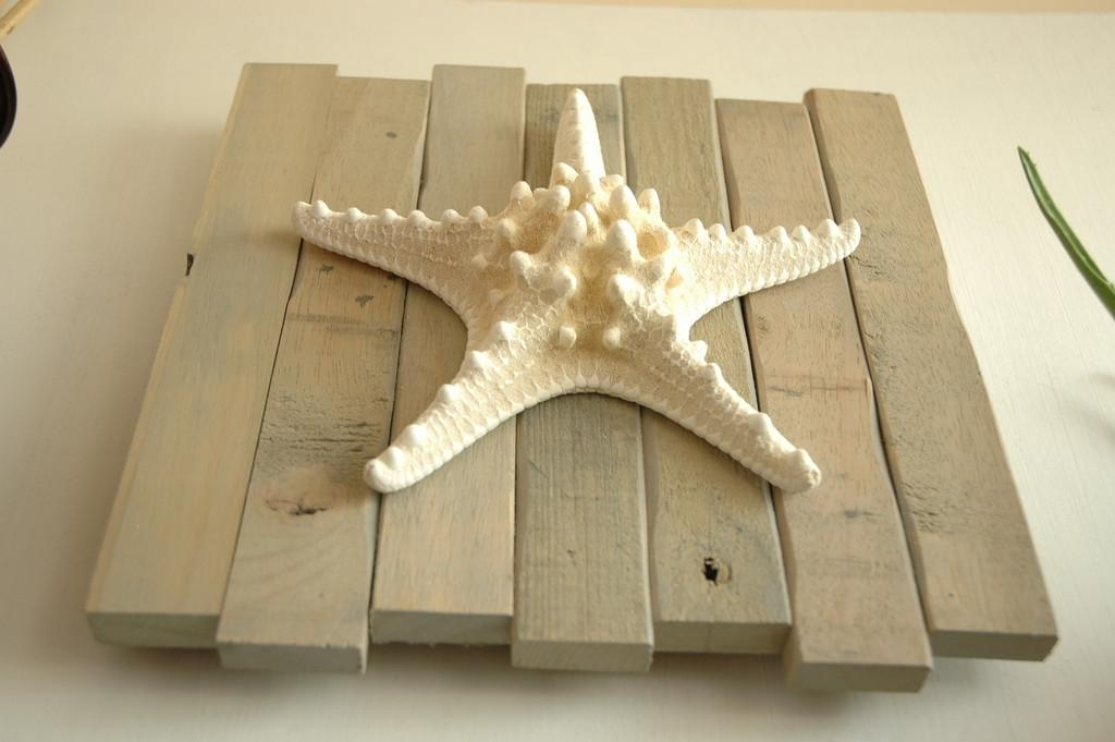 Large Starfish Wall Decor | Jeffsbakery Basement & Mattress Inside Large Starfish Wall Decors (Image 7 of 20)