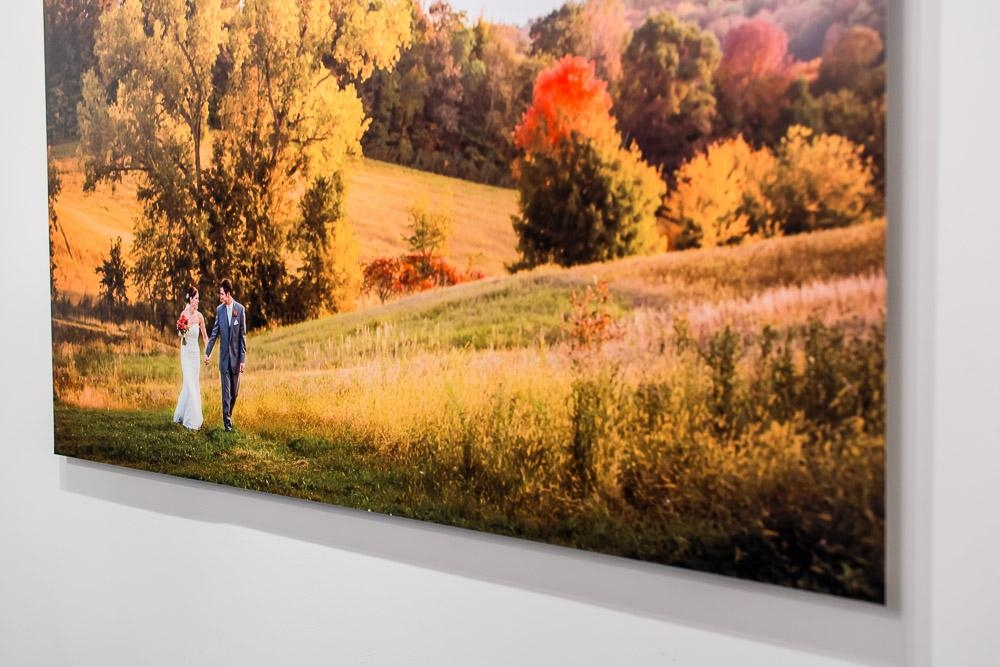 Minneapolis Photographer Wall Art – Minneapolis Wedding Pertaining To Minneapolis Wall Art (Image 15 of 20)