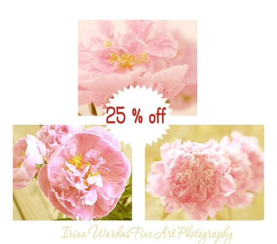 Pink Peony Wall Photo Decor | Pink Colors Art For Girls Room Pertaining To Pink Flower Wall Art (View 16 of 20)