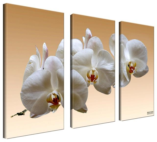 Ready2Hangart Bruce Bain 'white Orchid' Canvas Wall Art (3 Piece With Three Piece Wall Art Sets (Image 15 of 20)