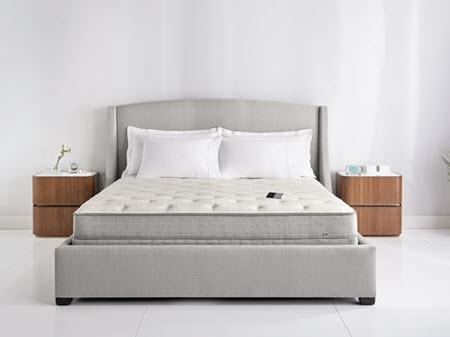 Sleep Number Sofa Bed – Home And Design | Home Design With Regard To Sleep Number Sofa Beds (Image 15 of 20)