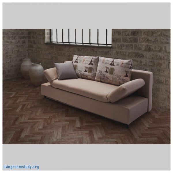 Sleeper Sofa: Sears Sleeper Sofa Luxury Furniture Leather Loveseat Within Sears Sleeper Sofas (Image 10 of 20)