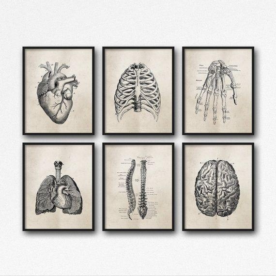 The 25+ Best Doctors Office Decor Ideas On Pinterest | Medical For Medical Wall Art (View 3 of 20)