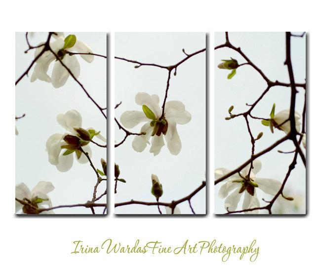 Three Panel Gallery Wrapped Canvas | White Magnolia Wall Art Decor Pertaining To 3 Piece Floral Canvas Wall Art (View 8 of 20)