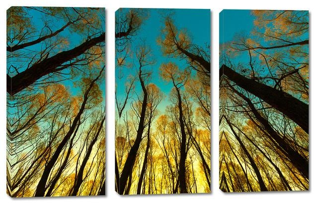 Trees In Forest Canvas Print, 3 Panel Split, Triptych Wall Art With Regard To Three Panel Wall Art (Image 16 of 20)
