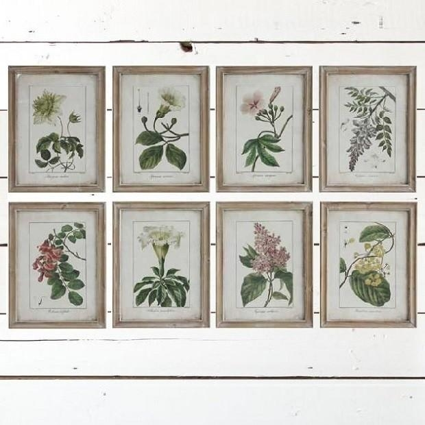 Vintage Style Framed Flower Wall Art, Set Of 8 | Antique Farmhouse Pertaining To Vintage Style Wall Art (View 13 of 20)
