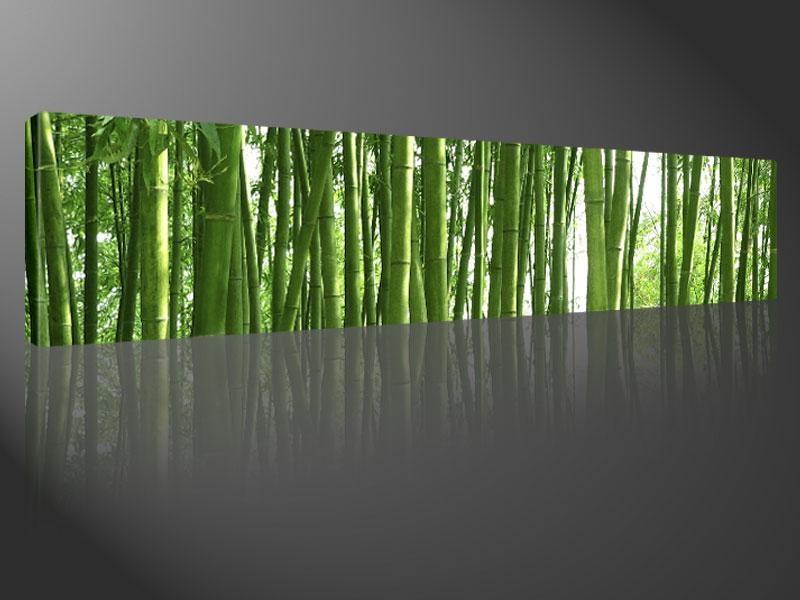 Wall Art And Canvas Prints | Wallartideas Regarding Large Green Wall Art (View 4 of 20)