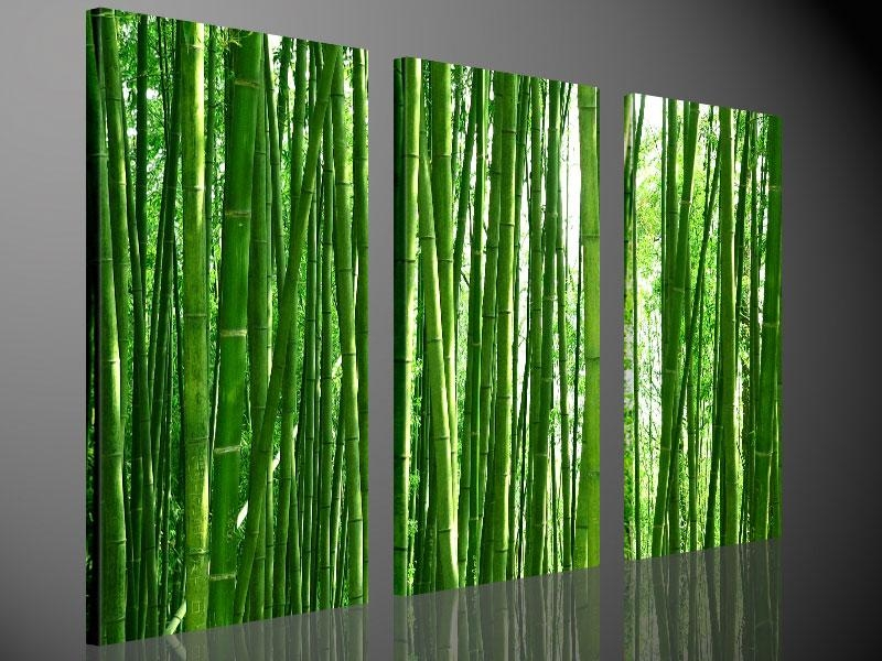 Wall Art And Canvas Prints | Wallartideas With Large Green Wall Art (View 6 of 20)