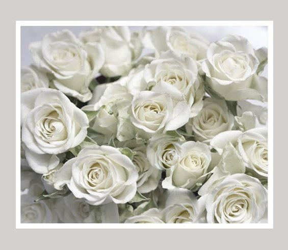 White Roses Floral Bathroom Bedroom Wall Decor | Large Shabby Chic Art Inside Large White Wall Art (View 12 of 20)