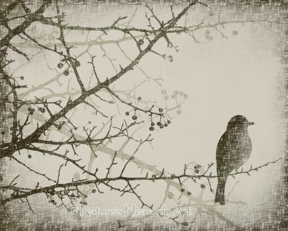 Winter Tree Branch 8 X 10 Art Print Spring Bird Vintage Style With Regard To Vintage Style Wall Art (View 14 of 20)