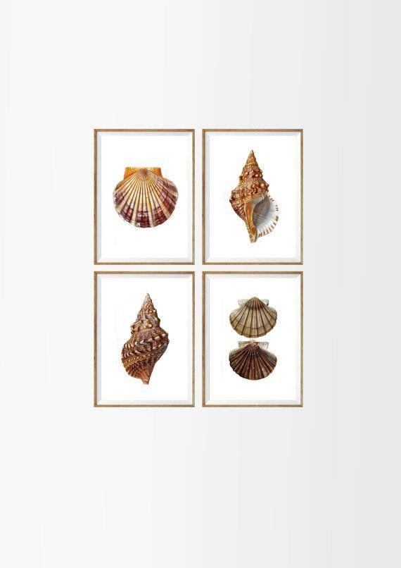 142 Best Wall Art Images On Pinterest | Art Print, Cardboard Boxes Regarding Seashell Prints Wall Art (Image 1 of 20)