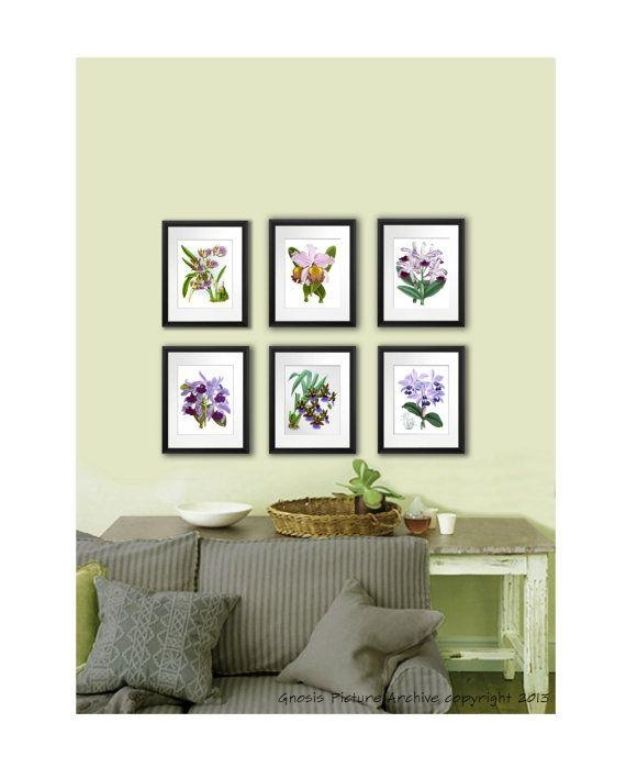 18 Best Exotic Tropical Flowering Orchids Wall Art Decor Prints With Exotic Wall Art (Image 1 of 20)