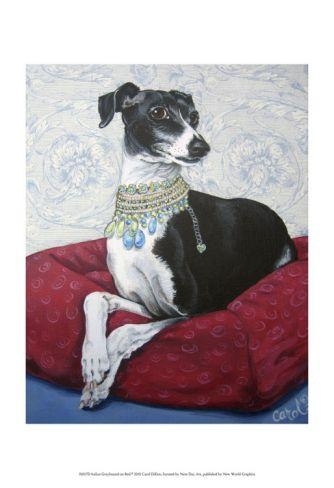 18 Best Italian Greyhounds Images On Pinterest | Greyhounds Pertaining To Italian Greyhound Wall Art (View 6 of 20)