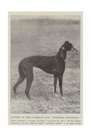 325 Best Vintage Greyhounds Images On Pinterest | Greyhounds Regarding Italian Greyhound Wall Art (View 20 of 20)